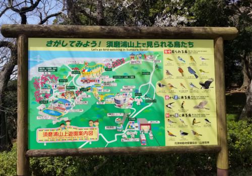 山上遊園案内図