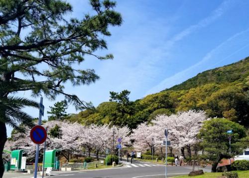 須磨浦公園駐車場